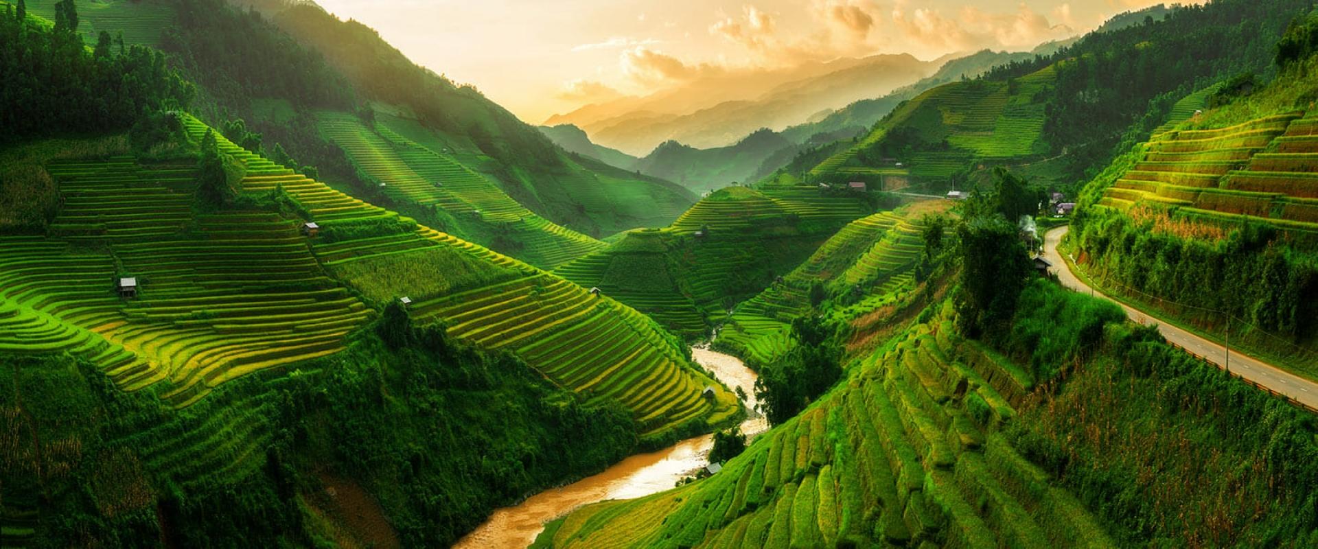 COMPLETE OF VIETNAM